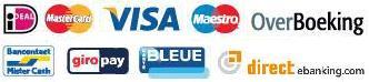 multisafepay bietet viele Zahlungsmöglichkeiten
