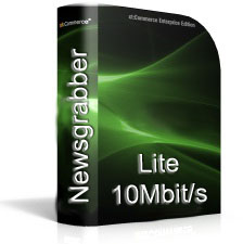 Usenet Lite 10Mbit